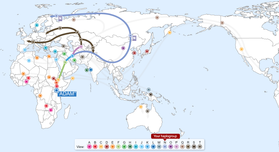 Haplogroups N and R